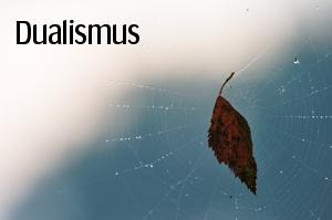 projekt-dualismus